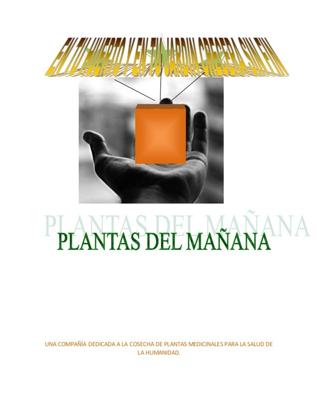 UNA COMPAÑÍA DEDICADA A LA COSECHA DE PLANTAS MEDICINALES PARA LA SALUD DE LA HUMANIDAD.