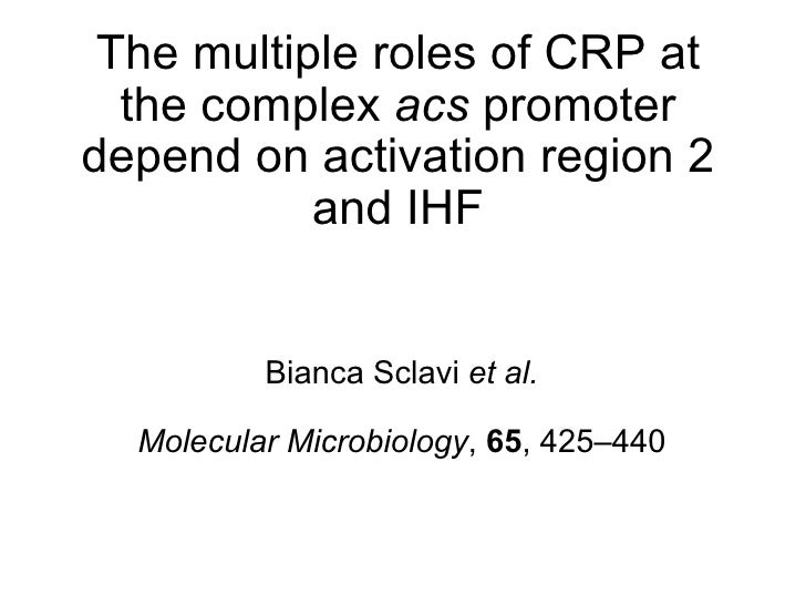 The multiple roles of CRP at the complex  acs  promoter depend on activation region 2 and IHF Bianca Sclavi  et al. Molecu...
