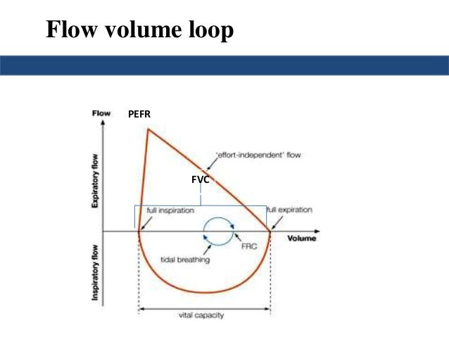 the fev1 as the radius of the airway was decreased Managing copd: what's your fev1 the classes of copd to see how significant the decrease in lung can open up your airways and become an.
