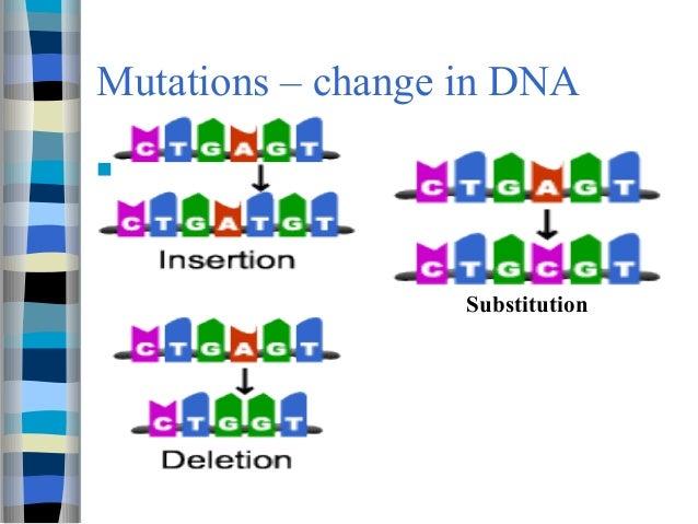 dna mutation diagram bbc higher bitesize biology mutations revision