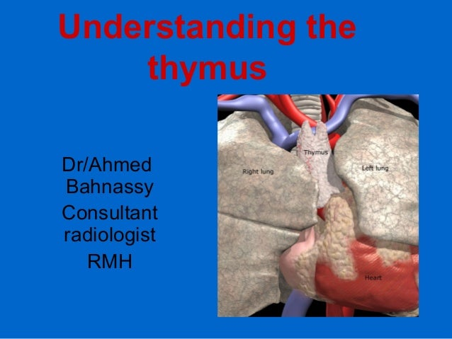Understanding the thymus