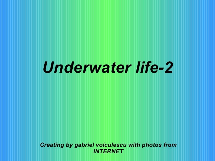Underwater life-2 Creating by gabriel voiculescu with photos from INTERNET