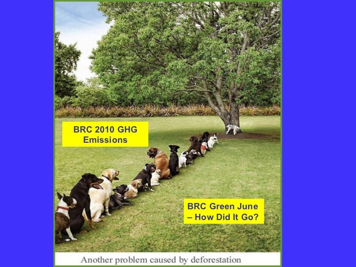 BRC 2010 GHG  Emissions               BRC Green June               – How Did It Go?