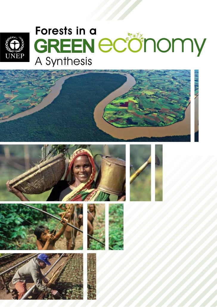 Forests in aGREEN economy            yA Synthesis