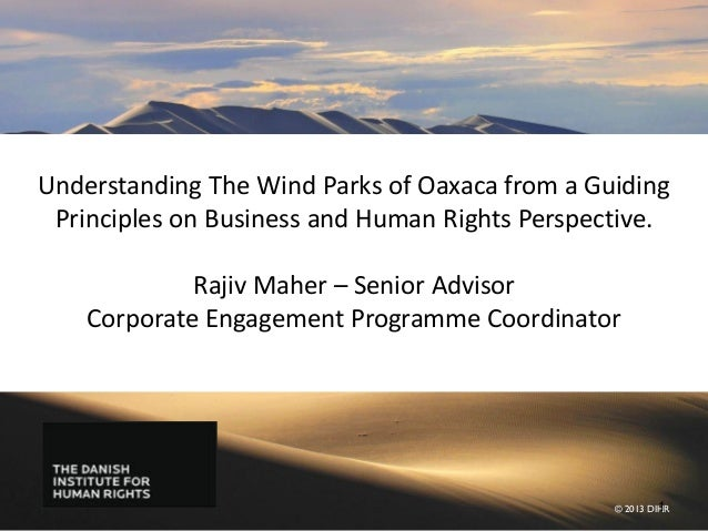 Understanding The Wind Parks of Oaxaca from a Guiding Principles on Business and Human Rights Perspective.