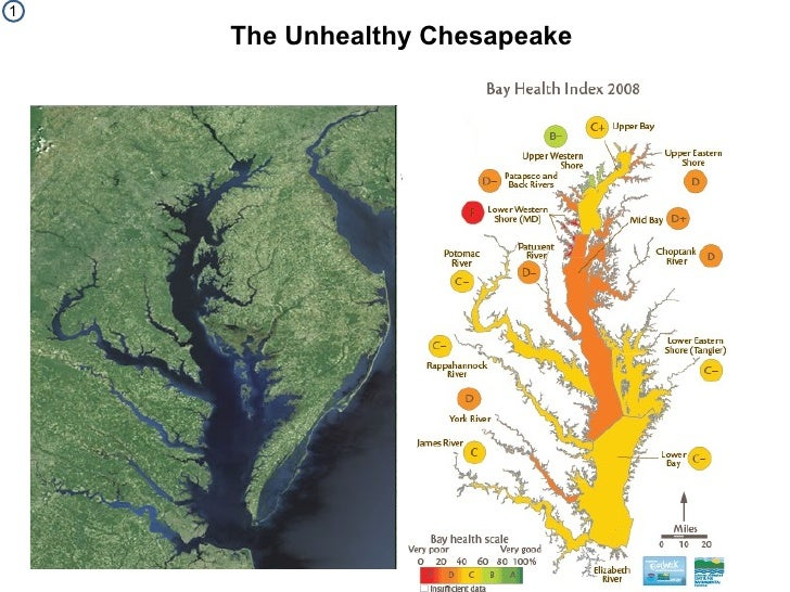 Unhealthy Chesapeake