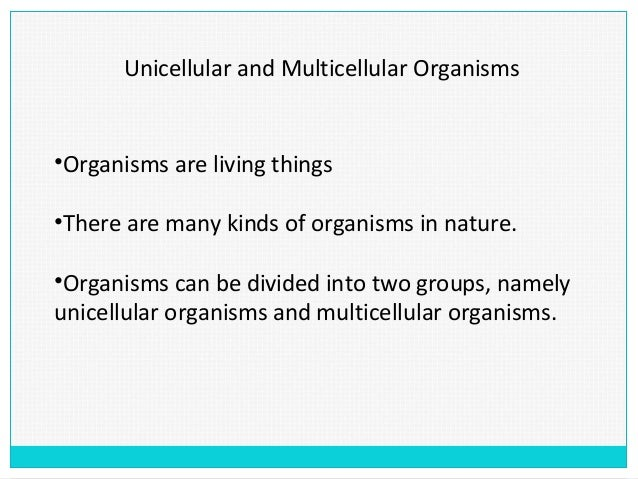 Unicellular and Multicellular Organisms•Organisms are living things•There are many kinds of organisms in nature.•Organisms...