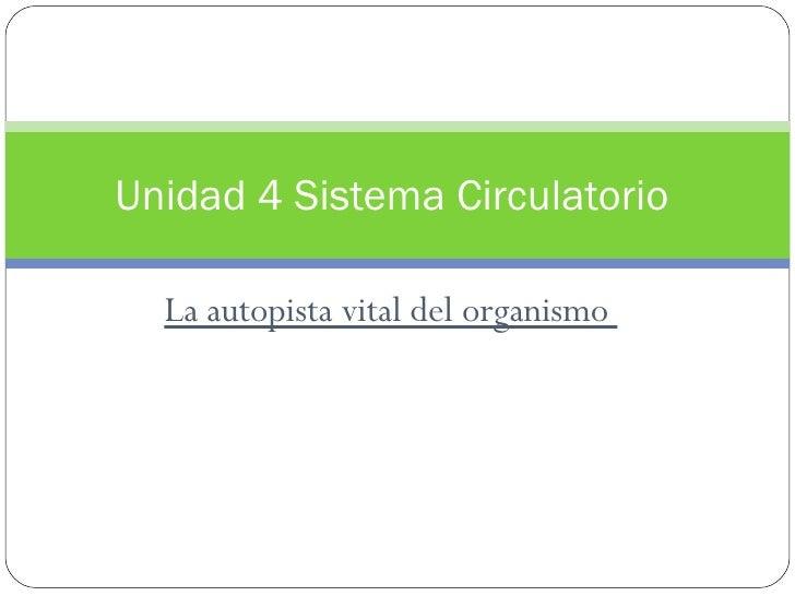La autopista vital del organismo  Unidad 4 Sistema Circulatorio