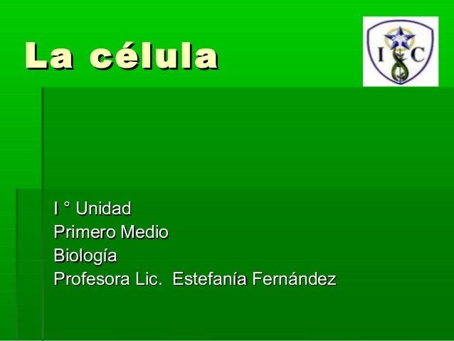 La célula I ° Unidad Primero Medio Biología Profesora Lic. Estefanía Fernández