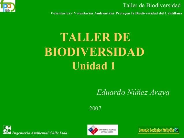 Taller de Biodiversidad Voluntarios y Voluntarias Ambientales Protegen la Biodiversidad del Cantillana Ingeniería Ambienta...
