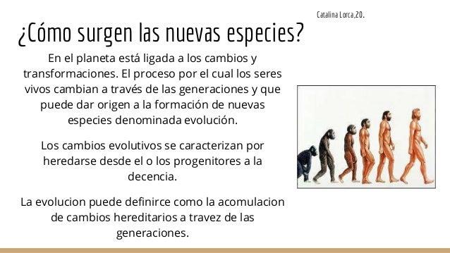 VII. LAS ERAS GEOLÓGICAS Y SUS HABITANTES