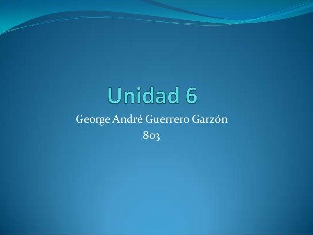 George André Guerrero Garzón 803