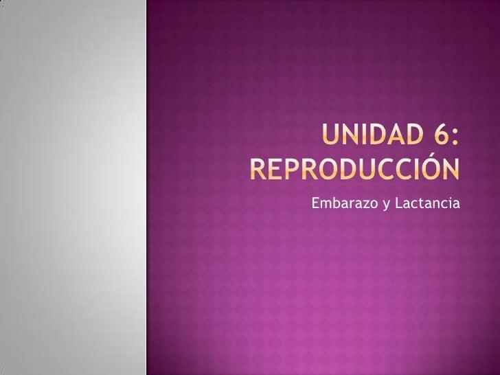 Unidad 6: REPRODUCCIÓN<br />Embarazo y Lactancia<br />