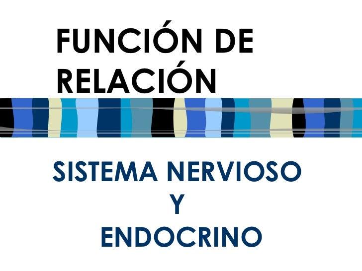 SISTEMA NERVIOSO  Y  ENDOCRINO FUNCIÓN DE RELACIÓN