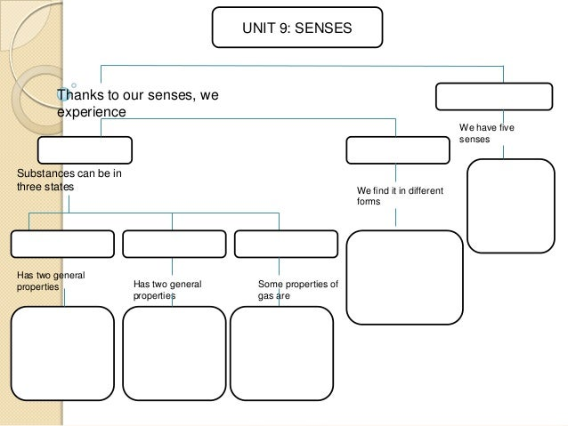 UNIT 9: SENSES  Thanks to our senses, we experience We have five senses  Substances can be in three states  Has two genera...