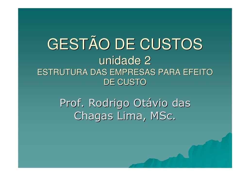 GESTÃO DE CUSTOS            unidade 2 ESTRUTURA DAS EMPRESAS PARA EFEITO             DE CUSTO      Prof. Rodrigo Otávio da...