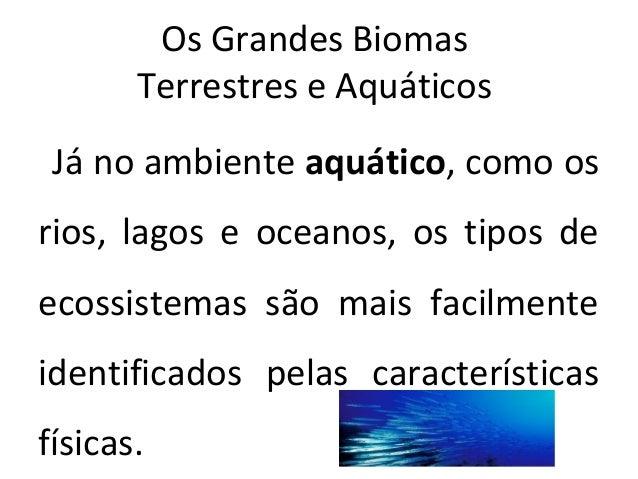 Os grandes biomas terrestres e aquáticos