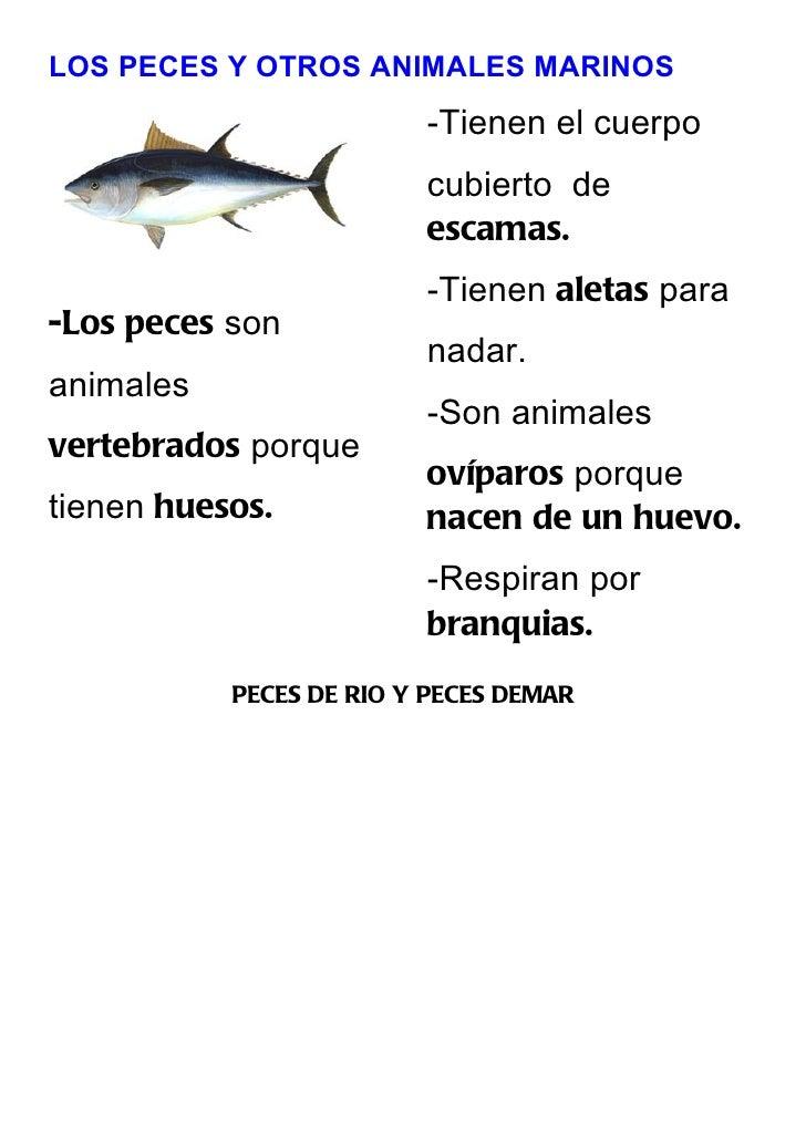 LOS PECES Y OTROS ANIMALES MARINOS                          -Tienen el cuerpo                          cubierto de        ...