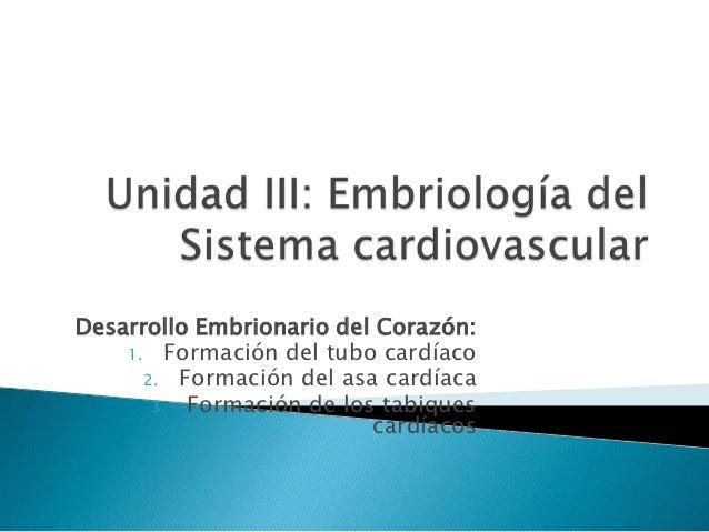 Desarrollo Embrionario del Corazón:    1. Formación del tubo cardíaco      2. Formación del asa cardíaca       3. Formació...