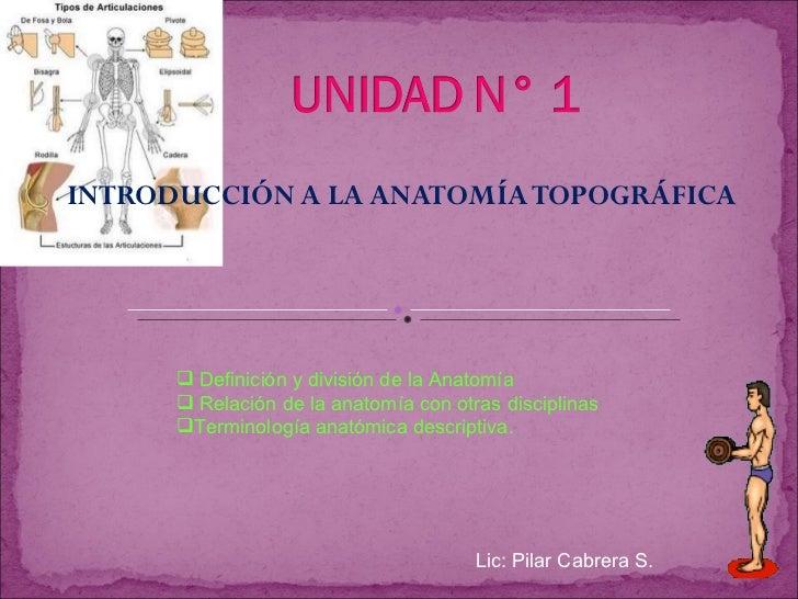 INTRODUCCIÓN A LA ANATOMÍA TOPOGRÁFICA Lic: Pilar Cabrera S. <ul><li>Definición y división de la Anatomía </li></ul><ul><l...