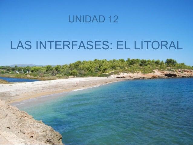 UNIDAD 12  LAS INTERFASES: EL LITORAL