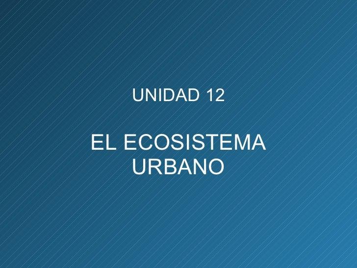 UNIDAD 12 EL ECOSISTEMA URBANO