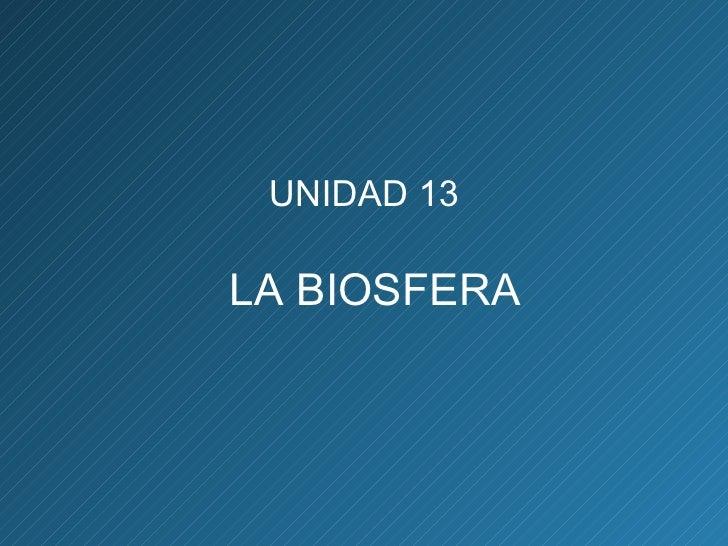 UNIDAD 13 LA BIOSFERA