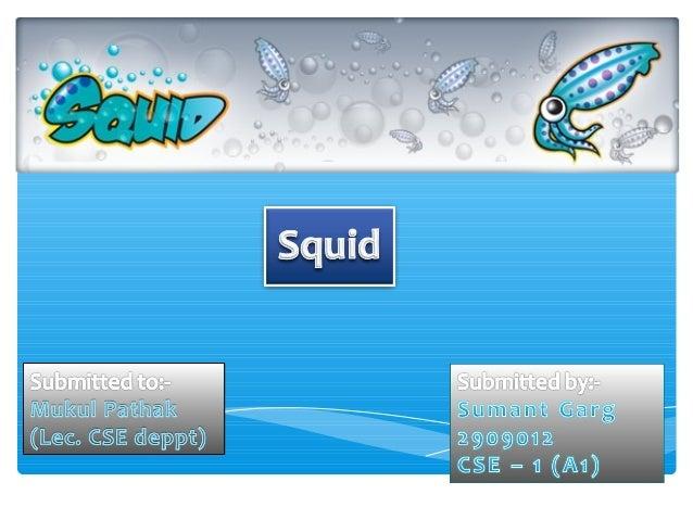 Squid Server