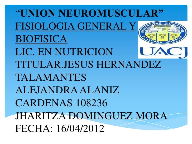 Union neuromuscular (1)