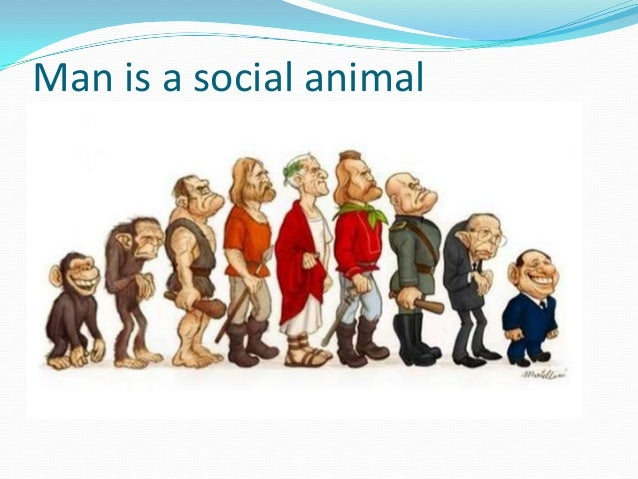 human social animal Social psychology links sociology with psychology in their shared study of the nature and causes of human social  human, can be described through animal.