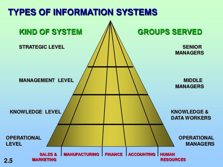 role of information systems essay Information systems role of information system in an organisation information technology essay the second phase was to emphasize the role of information.