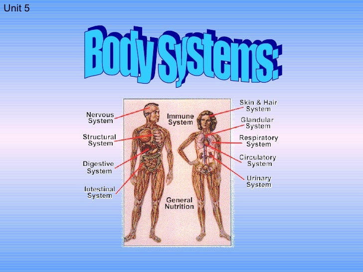 Body Systems: Unit 5