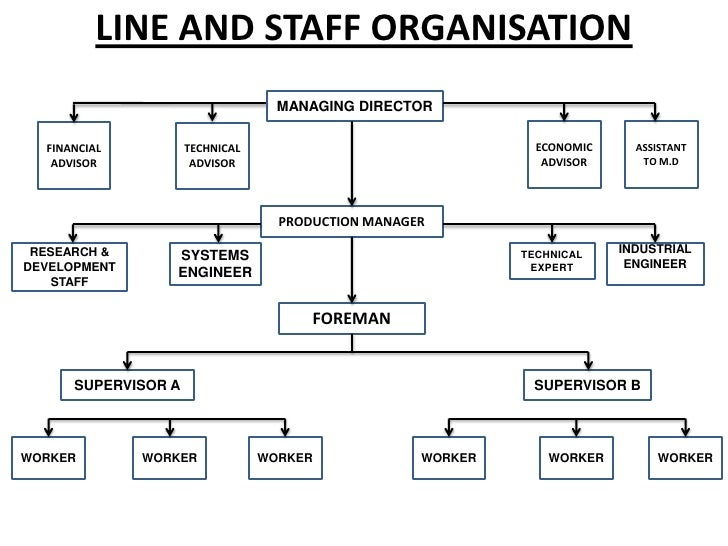 simple line and staff organizational chart pictures to pin
