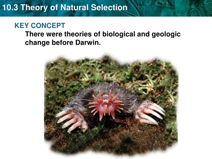 KEY CONCEPT There were theories of biological and geologic change before Darwin.<br />