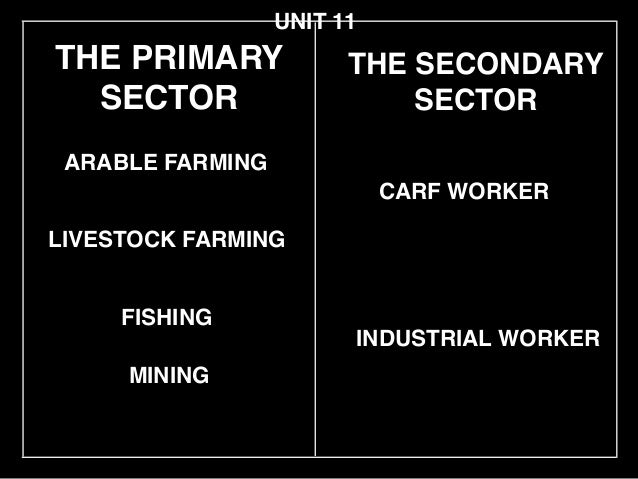 THE PRIMARY SECTOR LIVESTOCK FARMING ARABLE FARMING CARF WORKER UNIT 11 FISHING INDUSTRIAL WORKER THE SECONDARY! SECTOR MI...