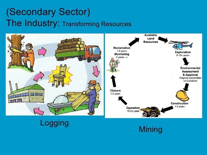 primary sector secondary sector tertiary sector essay Primary, secondary and tertiary sectors depend upon each other primary sector  supplies raw materials to secondary sector and receives tools.
