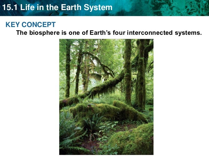 KEY CONCEPT The biosphere is one of Earth's four interconnected systems.   <br />