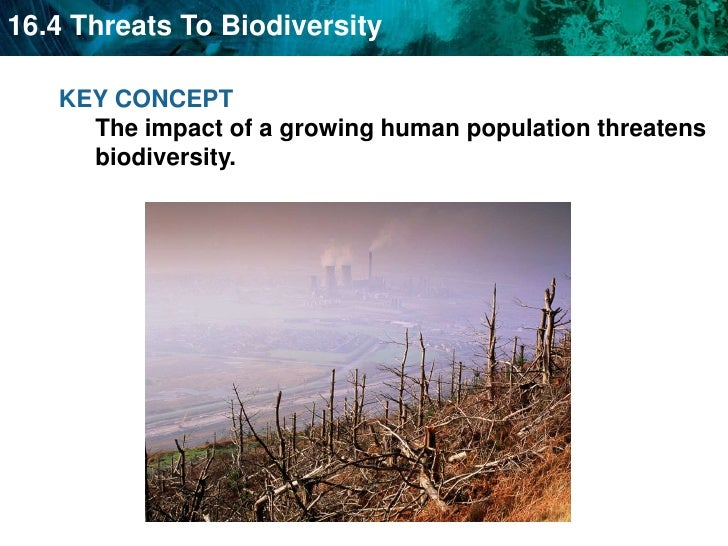 KEY CONCEPT The impact of a growing human population threatens biodiversity. <br />