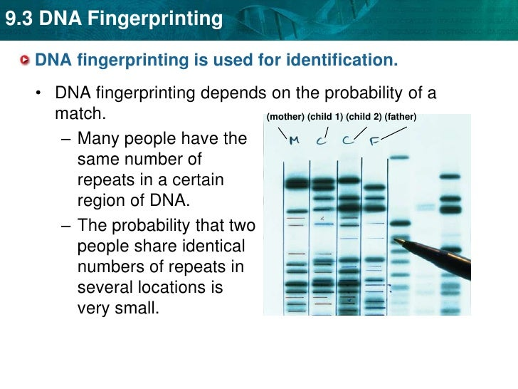 cj328 01 fingerprint analysis unit 7 learning Free essay: fingerprinting is used for many things, such as a robbery, or at a  crime scene  running head: unit 9 final essay exam unit 9 final essay exam  rhonda forbes kaplan university cj328-01 forensic fingerprint analysis  professor  credit to francis galton, who conducted the first study of fingerprint  patterns.