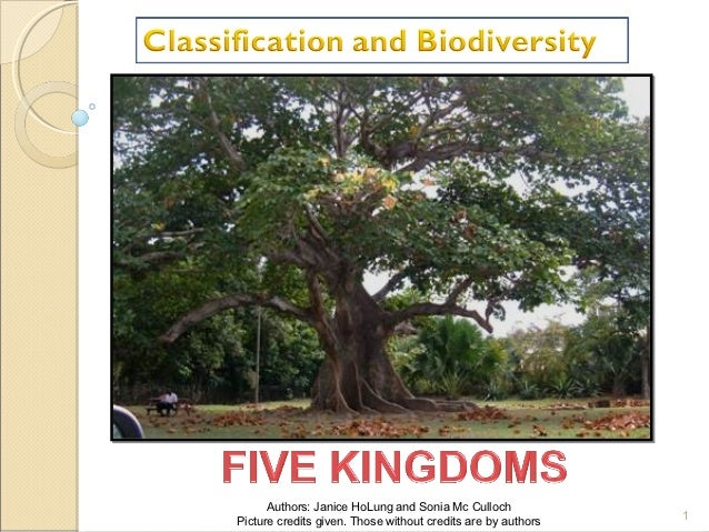 Unit 1 classification biodiversity presentation