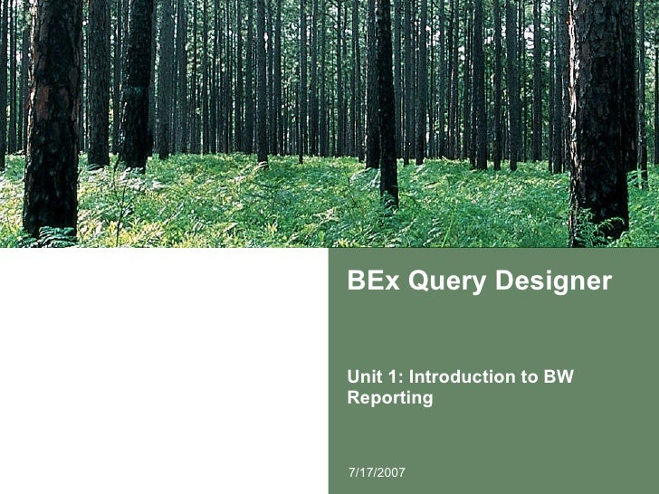 BEx Query Designer Unit 1: Introduction to BW Reporting 7/17/2007