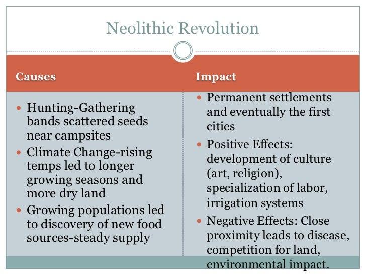 The Neolithic Revolution Essay