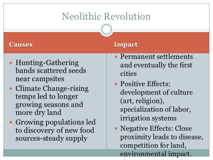 revolutionized revolution essay