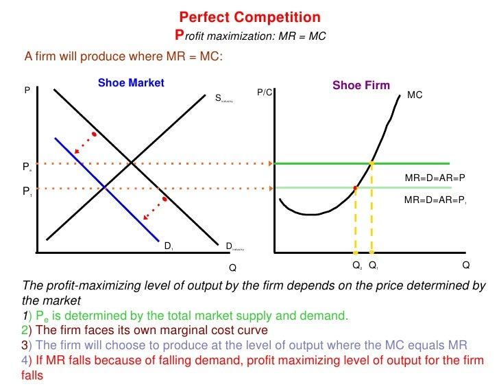 perfect competition case study pdf