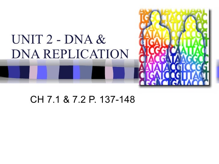 UNIT 2 - DNA &  DNA REPLICATION CH 7.1 & 7.2 P. 137-148