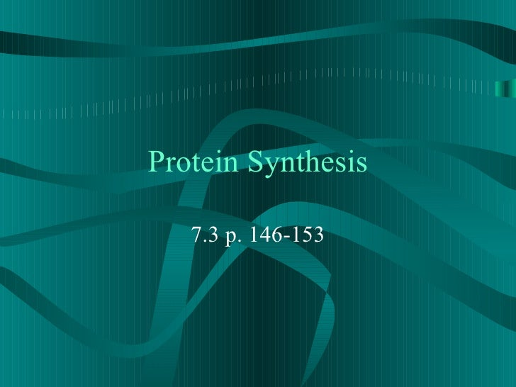 Protein Synthesis 7.3 p. 146-153