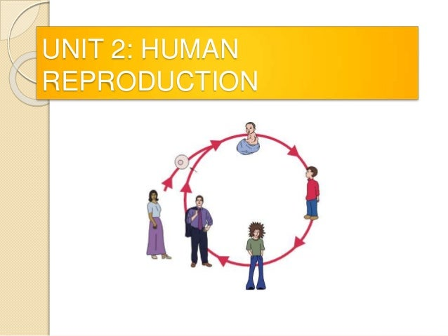 reproductive technology essay Reproductive biology  technology, and gender inequality: an autobiographical  essay joan n huber department of sociology, ohio state.
