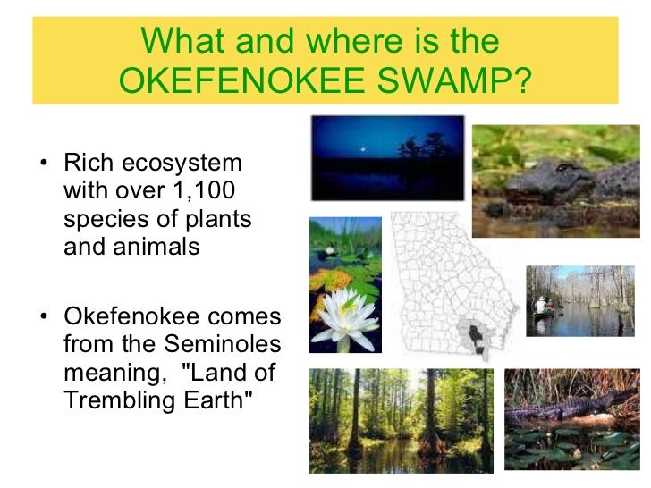 an introduction to the geography of the okefenokee swamp Challenges and lessons from a wetland lidar project: a case study of the okefenokee swamp, georgia, usa.