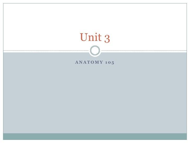 Anatomy 105<br />Unit 3<br />