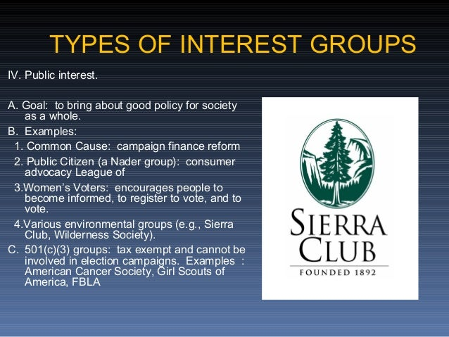 essays on interest groups in america For instance, in the us one of the most famous interest groups is the national rifle association, which defends the right to bear weapons this, of course, has led to controversy especially given the recent high school shootings in places such as virginia and columbine and in international news, the october 2007 high school shootings in finland.